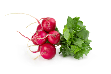 Freshly ripe radishes isolated over white background.