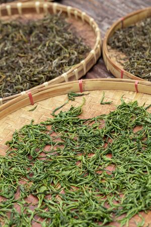 Premium Dry green tea leaves spread curing in bamboo basket tray after harvest. 写真素材