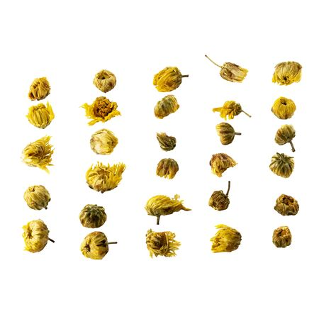 Dried Chrysanthemum Flowers isolated on a White Background.