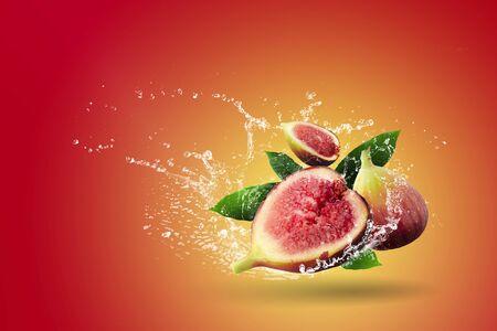 Water splashing on Fresh figs over red background. Foto de archivo