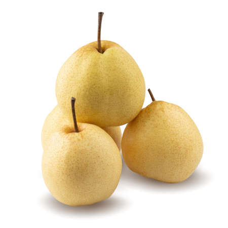 Fresh Chinese pear fruit isolated on white background with clipping path.