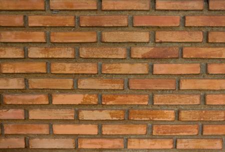 paredes de ladrillos: antiguo muro de ladrillo textura de fondo