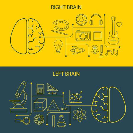 mente humana: funciones cerebrales derecho e izquierdo y el concepto