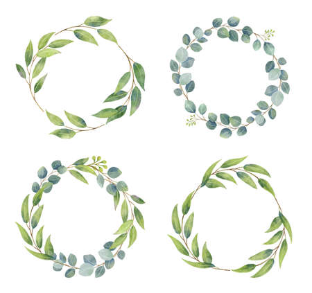 Eucalyptus branches wreaths with watercolor style.  Wedding greenery in circle decorative design elements.