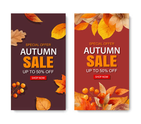 Autumn sale banner template background. Autumn shopping sale with leaves and text.