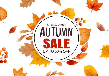 Autumn sale banner template background. Autumn shopping sale with leaves frame and text. 矢量图像