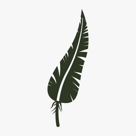 Feather vector icon. Illustration