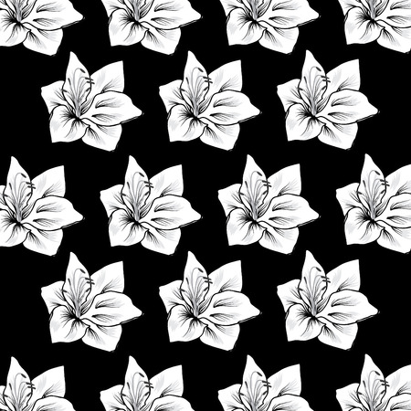 no 1: black and white flower on black background NO 1