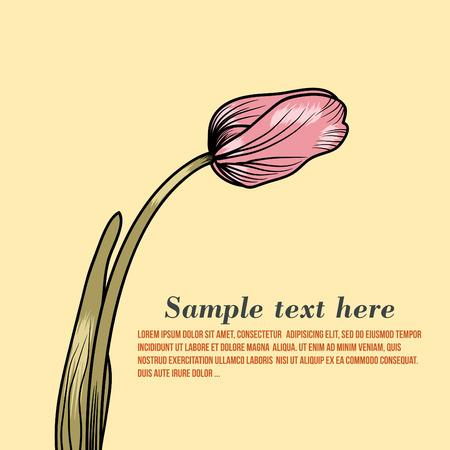 Vector illustration of retro tulip flower pink Illustration