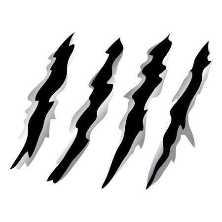 Vector illustration of Claw scratches