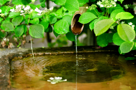 bamboo fountain: Bamboo water fountain as one of major component in traditional Japanese garden