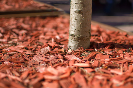 Red mulch used for garden decorating