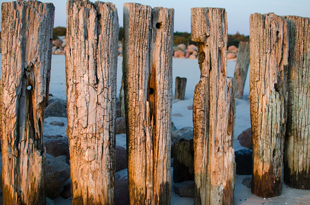 Old coastal protection with a breakwater. Wooden stakes in the sea
