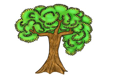 Simple composition of a lush, green tree. Illustration of serene looking, plant with a brown trunk and a rich foliage. Rich in colour with white background, outlined with a dark line