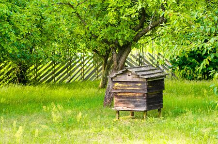 Very old, historical empty beehive in the garden. Traditional beehive from old times, made of solid wood . 스톡 콘텐츠
