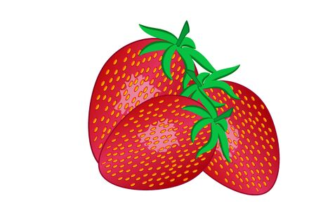 Three red strawberries with leaves on a white background. Graphic realistic vector illustration for fabric, paper, label, menu, cover, wrap ,t-shirt, textile, poster, card, booking, wallpaper.