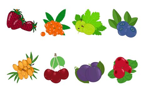 Berry icon set isolated on white background. Strawberries, plum, buckthorn, cherry, gooseberry, rowan, lingonberry, blueberry. Sweet fruit branches. Cartoon flat style. Stock vector illustration Illusztráció