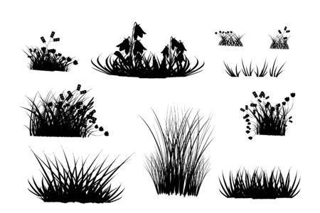 Set di sagome di erba nera isolati su sfondo bianco. Collezione di sagome di erba di prato ed erbe. Ciuffi neri forme d'erba. Impostare elementi di design della natura. Illustrazione vettoriale d'archivio