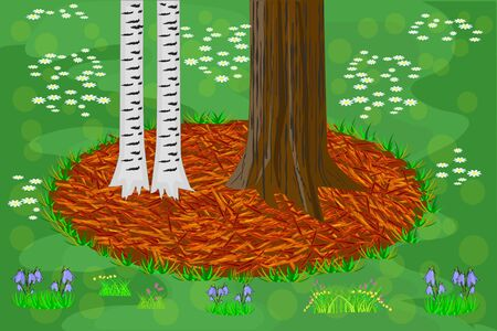 Mulch gardening concept with trees, red mulch and grass. Trees trunk base with mulch and lawn. Agriculture outdoor seasonal work. Mulching of plants, soil protection. Landscape design mulch. Vector