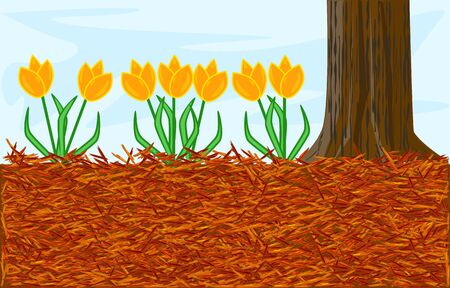 Mulch gardening concept with tulip, red mulch and tree trunk. Landscape design mulch. Mulches and mulching for decorative finish, soil protection. Woody waste using as a mulch. Stock vector illustration Vettoriali