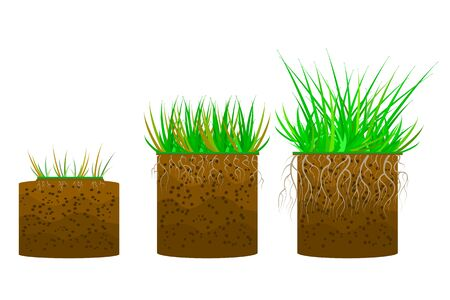 Set of green grass with a ground isolated on white background. Dirt layers. Soil layer scheme with grass, roots and earth texture. Cross section ground slice. Piece of land with green grass. Stock vector illustration