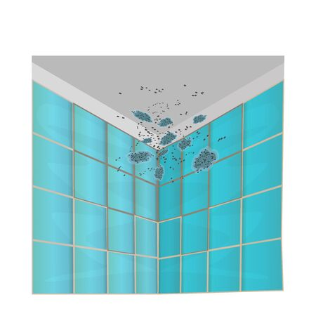 Mold on walls and ceiling isolated on white background. Mold on the green tile in the bathroom. Mildew in the shower. Stains on the wall. Concept of condensation, damp, high humidity and respiratory problems. Stock vector illustration Illustration