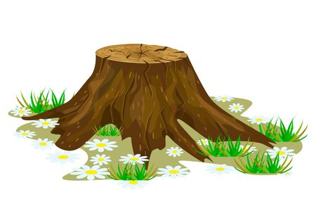Tree stump isolated on white background. Big old tree stump with roots, grass and flowers. Cartoon brown trunk icon. Saw cut tree. Felled tree. Stock vector illustration Illustration
