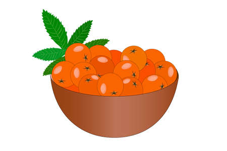 Bowl of delicious juicy rowan isolated on white background. Big pile of fresh orange rowan in the brown bowl. Kitchenware design element. Full plate of beautiful juicy berries. Bountiful harvest. Organic fruit. Stock vector illustration