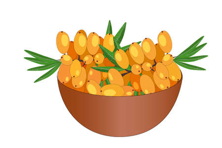 Bowl of delicious juicy sea buckthorn isolated on white background. Big pile of fresh yellow sea buckthorn in the brown bowl. Kitchenware design element. Full plate of beautiful juicy berries. Bountiful harvest. Organic fruit. Stock vector illustration Ilustração