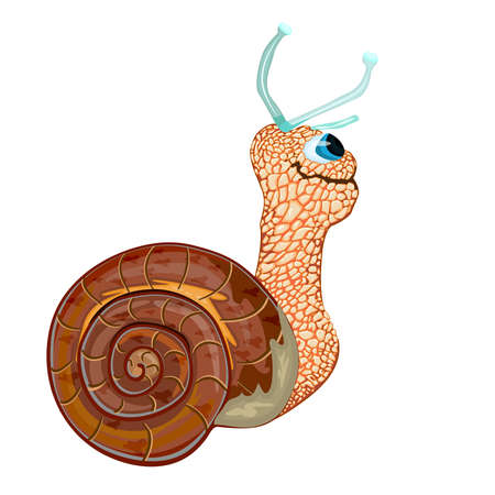 Snail isolated on white background. Happy cute character cartoon snail with his home shell body. Cheerful little garden snail side view. Stock vector illustration