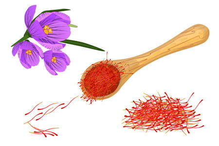 Saffron set isolated on white background. Dried spice saffron threads in wooden spoon and crocus flower. Organic indian spices. Template for packaging design, label, banner. Stock vector illustration Ilustracje wektorowe