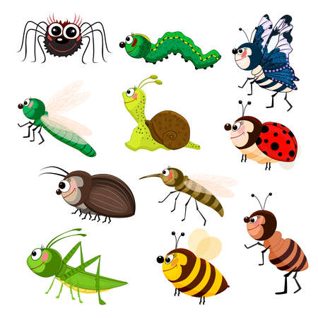 Cartoon insect set isolated on white background. Funny smiling bugs. Colorful beetles character collection. Cute garden animals. Symbol of nature, spring, summer. Stock vector illustration