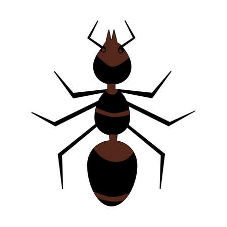 Brown ant isolated on white background. Red fire ant icon. Top view insect silhouette. Simple flat style design logo or pictogram. Bug stylized sign. Stock vector illustration