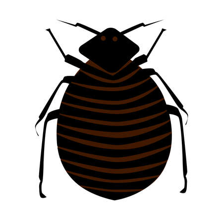 Flea isolated on white background. Cartoon insect pest. Black common flea icon. Bedbug. Household pests. Simple flat design style.
