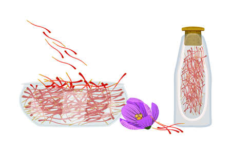 Set of saffron isolated on white background. Dried spice saffron threads in bowl and bottle. Crocus flower and stamens, glass dish and bottle full of saffron seasoning. Crocus sativus. Stock vector illustration