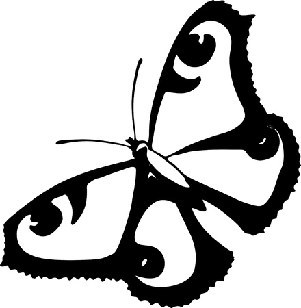 Graphic stylized black and whit peacock butterfly silhouette