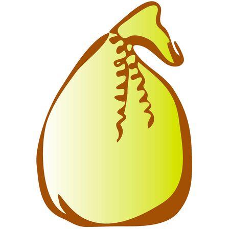 Illustration of giftbug icon on white background Zdjęcie Seryjne