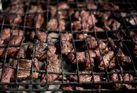 meat is fried on the grill over the coals during the barbecue season