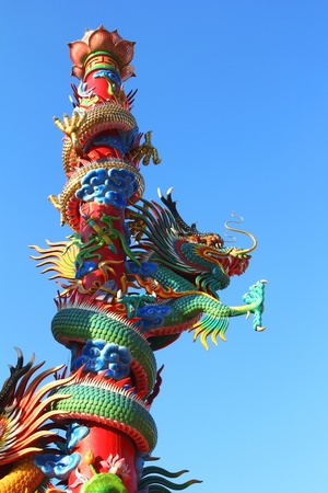 dragon fly: Dragon fly Stock Photo