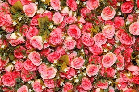 Background of cloth rose  photo