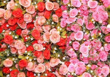 Cloth rose for use as background