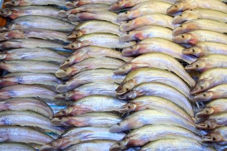sheatfish: Siluro secos listos para la venta en el mercado de Don Wai flotante, Nakonprathom provincia, Tailandia