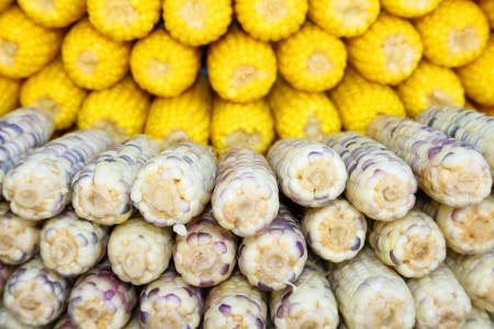 Beautiful 2 types  of boiled corn in the market   Stock Photo