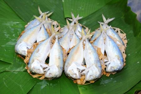 Chub mackerel on the bamboo mesh and banana leaf   Stock Photo - 14573584