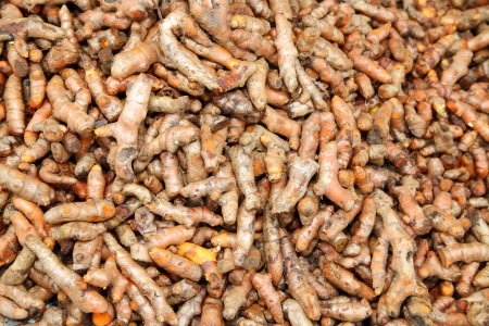 Fresh Turmeric Root or Curcuma Longa was sale in Thailand market for food ingredient   photo