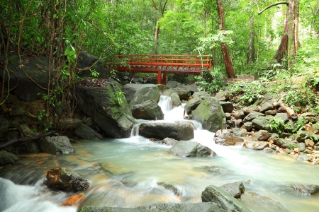 Ngow waterfall with red bridge in the forest at Ranong province ,Thailand photo