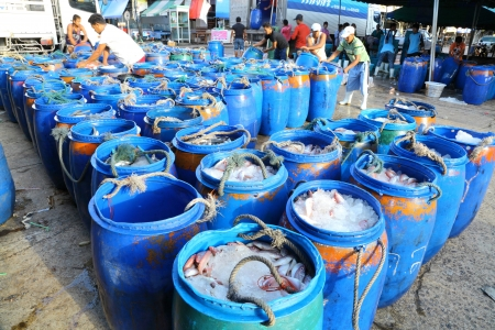 RANONG, THAILAND - JULY 16: The merchants arrange the bucket which plenty of fish and trade it in the biggest fish market one in southern of Thailand at Sapaanpla on July 16,2012 in Ranong, Thailand