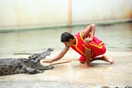 SAMUTHPRAKARN, THAILAND - SEPTEMBER 1 : The man showing for the tourist by stretch out one�s hand into the crocodile jaw at Samuthprakarn crocodile farm on September 1,2012 in Samuthprakarn,Thailand