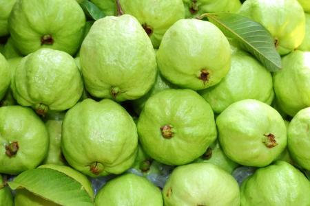 guayabo: Fruta de guayaba fresca y verde se vende en el mercado de Tailandia Foto de archivo
