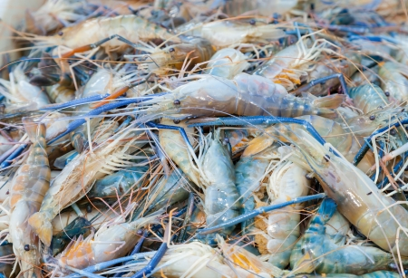 Fresh big shrimp    Macrobrachium rosenbergii  in Thailand street market  photo